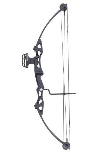 "Siege SAS 55 lb 29"" Top Rated Compound Bow For Beginners"
