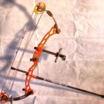 Top 9 Best Compound Bow For Hunting